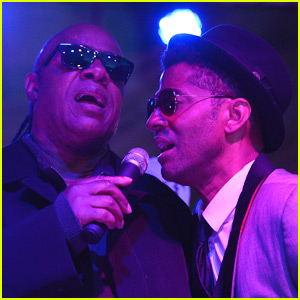 Stevie Wonder Performs 'Purple Rain' During Prince Tribute in LA