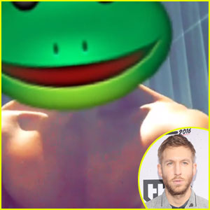 Calvin Harris Shows Off Insane Six-Pack With a Frog Head