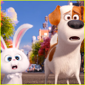 'Secret Life of Pets' Breaks Animation Record for First Weekend!