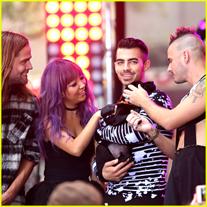 DNCE Cuddle With Today Show's New Puppy at Concert