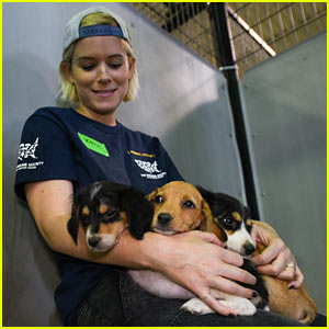 Kate Mara Assists Humane Society with Animal Cruelty Case in Ohio