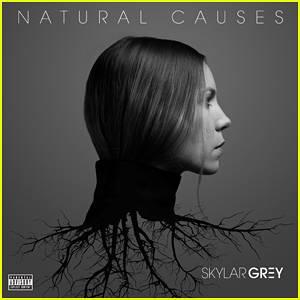 Skylar Grey Duets with Eminem On 'Kill For You' - Stream & Lyrics!