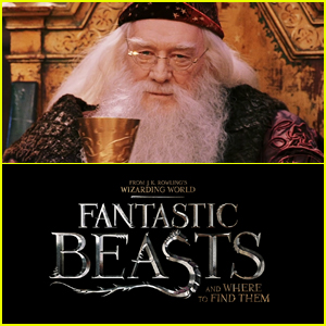 Dumbledore Confirmed to Appear in 'Fantastic Beasts' Films!