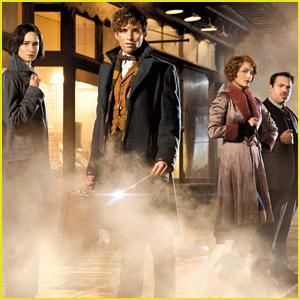'Fantastic Beasts' Cast List - Meet the 'Harry Potter' Spinoff Stars