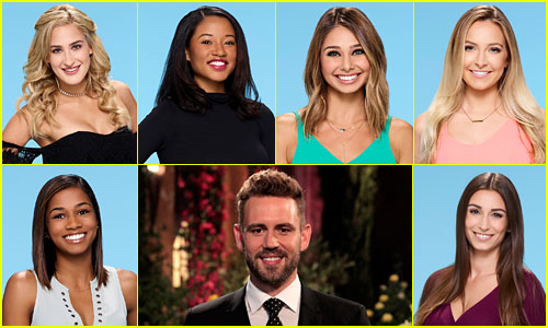 the bachelor 2017 30 women for nick vialls season revealed - De Bachelor Girls Nick