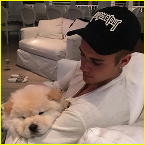 Justin Bieber Gave Dog Todd to His Dancer But Now He Needs Life-Saving Surgery