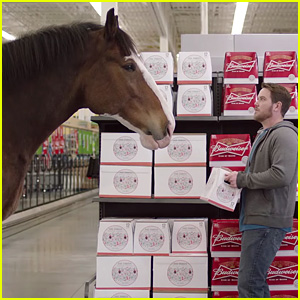 Watch budweisers best clydesdales super bowl commercials 2017 watch budweisers best clydesdales super bowl commercials aloadofball Choice Image
