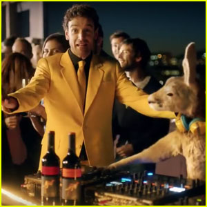 Yellow Tail Wine Super Bowl Commercial 2017: 'Wanna Pet My Roo?'