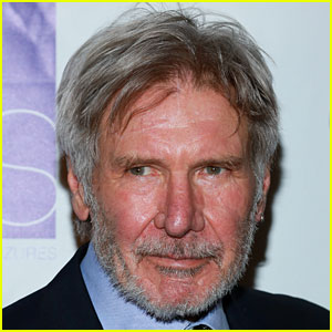 Harrison Ford Was 'Distracted' During Airport Runway Incident
