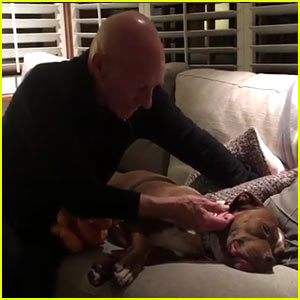 Patrick Stewart Cuddles His New Foster Pit Bull in Most Adorable Videos Ever