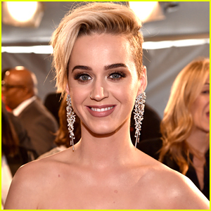 Katy Perry Confirmed as Musical Guest on 'SNL' Finale!