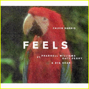 Calvin Harris ft. Katy Perry, Pharrell, & Big Sean: 'Feels' Stream, Lyrics & Download - Listen Now!