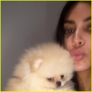 Kim Kardashian Gets North an Adorable Puppy for 4th Birthday!