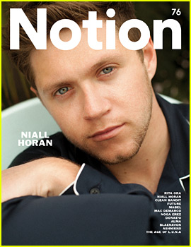 Niall Horan Never Thought About Going Solo Until This Happened