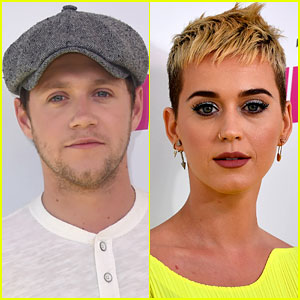 Niall Horan Responds to Katy Perry's Flirting Comments: 'Please Stop Being Mean to Me!'