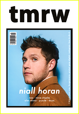 Niall Horan's Album Has One Song That is So Irish