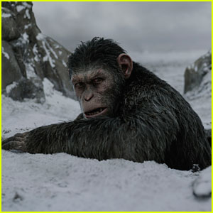 Is There a 'War for the Planet of the Apes' End Credits Scene?