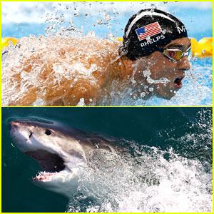 Michael Phelps Raced Computer Generated Shark & Fans Weren't Happy - Read the Tweets