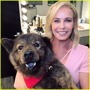 Chelsea Handler Pens Heartfelt Goodbye to Beloved Dog Tammy