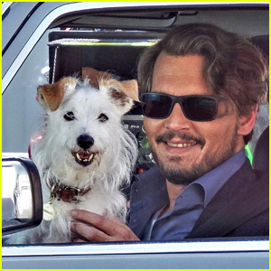 Johnny Depp Plays with a Dog on 'Richard Says Goodbye' Set