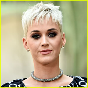 Katy Perry Reveals Her Choices for 'American Idol' Co-Judges!