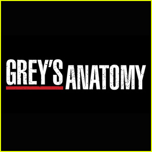 'Grey's Anatomy' Loses a Series Regular in Latest Episode (Spoilers)