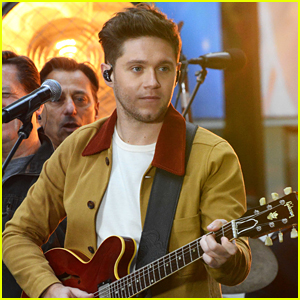Niall Horan Confesses He Wanted To Rap on Camila Cabello's 'Havana'