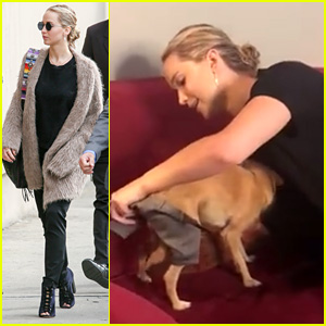 Jennifer Lawrence Shares Cute Video of Dog Pippi Backstage at 'Kimmel'