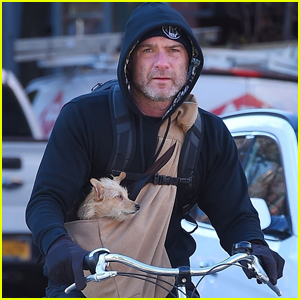 Liev Schreiber Takes His Cute Pup Woody For a Bike Ride!