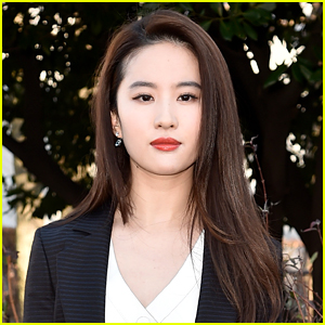 Disney's 'Mulan' Casts Liu Yifei in Title Role!
