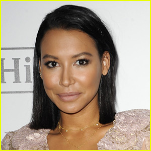 Naya Rivera Hit Husband Ryan Dorsey in the Head, Police Say