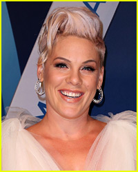 Pink's American Music Awards Performance Will Be Crazy!
