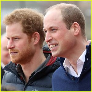 Princes William & Harry to Cameo in 'Star Wars: The Last Jedi'!
