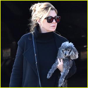 Ellen Pompeo Runs Errands with Her Adorable Dog Tino!