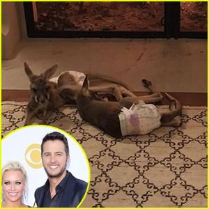 Luke Bryan Surprises Wife Caroline with Two Kangaroos for Christmas! (VIDEO)