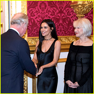 Cheryl Cole & Helen Mirren Meet With Prince Charles at the Prince's Trust Dinner in London!