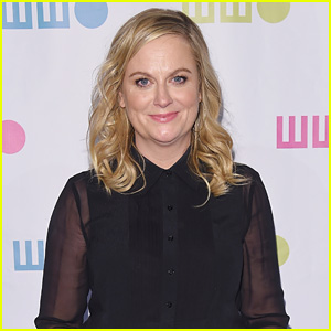 Amy Poehler Will Direct & Star in Netflix Comedy 'Wine Country' Alongside 'SNL' Alums!