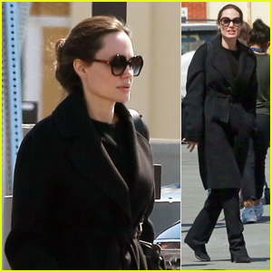 Angelina Jolie Heads to the Pet Store With Her Son Knox!