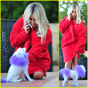 Aubrey O'Day Steps Out With Dog Ginger Following Donald Trump Jr. Affair Scandal