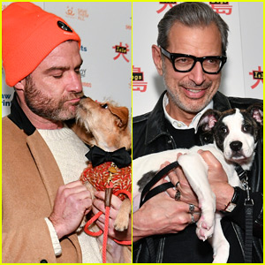 Liev Schreiber & Jeff Goldblum Cuddle Their Pups at 'Isle of Dogs' Screening!