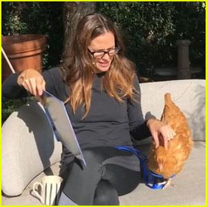 Jennifer Garner Mourns the Loss of Pet Chicken Regina George