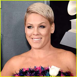 Pink Totally Destroys Troll Who Called Her 'Old'