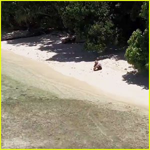 ABC's 'Castaways' Follows 12 Contestants As They Survive Alone on Deserted Islands - Watch Now!