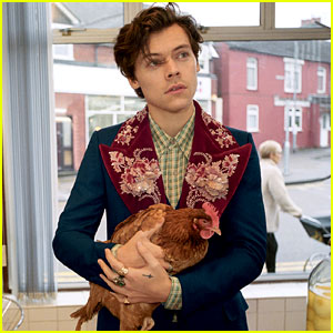 Harry Styles Has Some Special Guests for His Gucci Campaign: Dogs & Chickens!