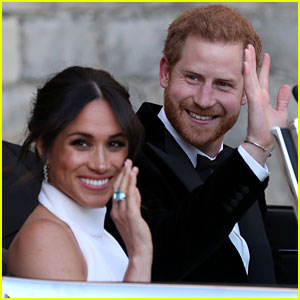 Are Prince Harry & Duchess Mehan Markle Going to Have Kids? Her Dad Reveals His Thoughts!
