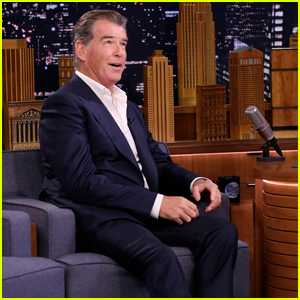 Barbra Streisand's Dog Bit Pierce Brosnan After Hearing Him Sing in 'Mamma Mia!'