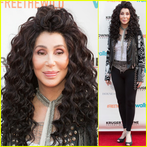 Cher Is Releasing an Album of ABBA Covers!