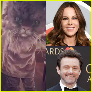Exes Kate Beckinsale & Michael Sheen Wear a Giant Cat Costume (Video)