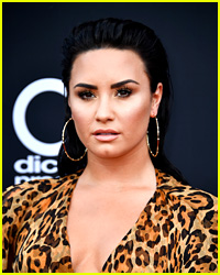 Demi Lovato's Team Reportedly Cutting Out 'Toxic People' From Her Inner Circle