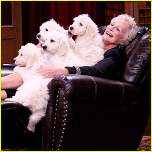 Glenn Close References Cruella de Vil on 'Tonight Show's Pup Quiz - Watch Here!